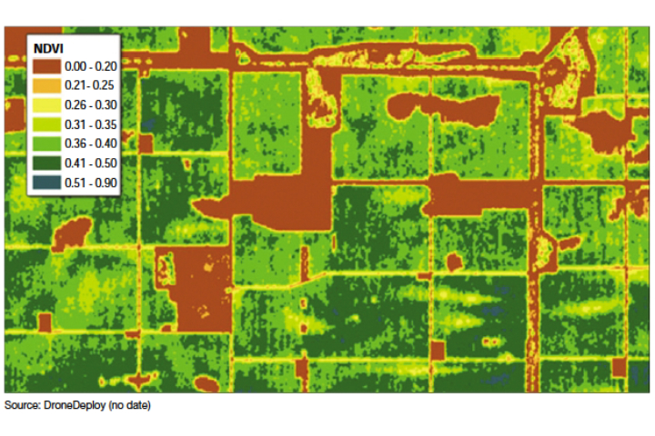 Una mappa Ndvigenerata da un drone