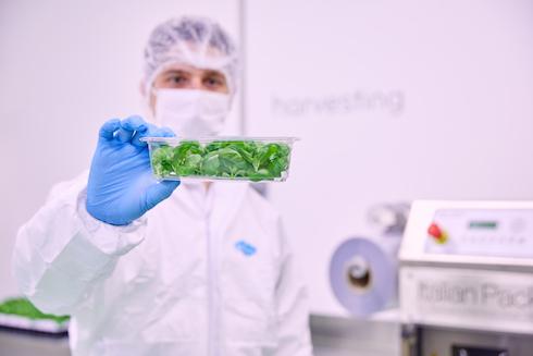 Planet Farms: il vertical farming è il nuovo modo di produrre cibo
