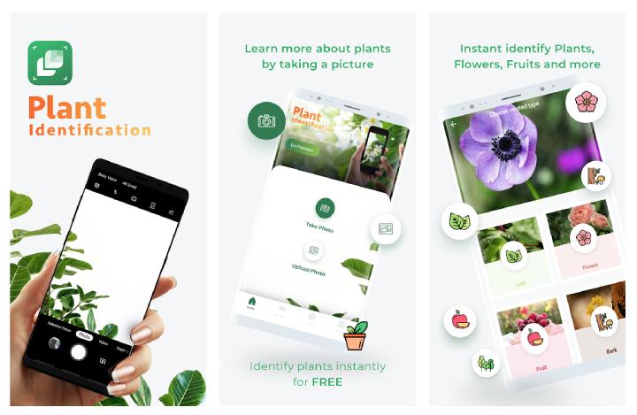 La presentazione di LeafSnap su Google Play