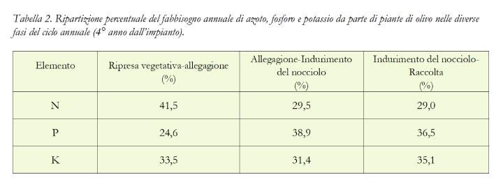 Tabella: Ripartizione percentuale del fabbisogno annuale di azoto, fosforo e potassio da parte di piante di olivo nelle diverse fasi del ciclo annuale