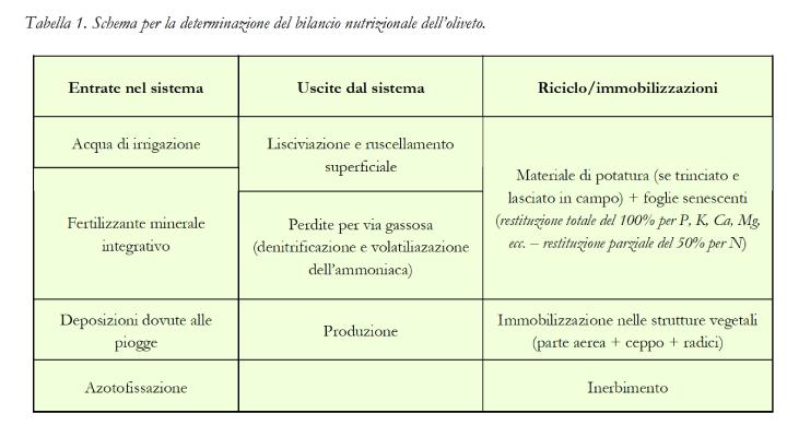 Tabella: Schema per la determinazione del bilancio nutrizionale dell'oliveto