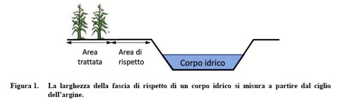 La larghezza della fascia di rispetto di un corpo idrico si misura a partire dal ciglio dell'argine