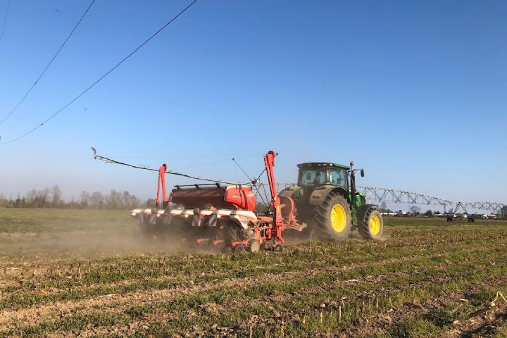 L'adozione della minima lavorazione permette di ridurre i costi e preservare la fertilità del suolo