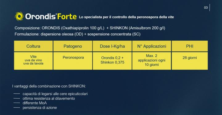 Orondis Forte