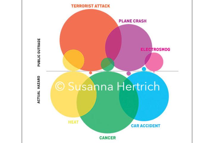 Il grafico di Susanna Hertrich