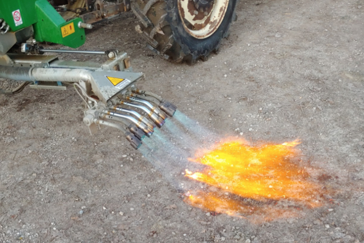 Il calore sprigionato dalle fiamme durante il pirodiserbo coinvolge solo i primi millimetri di terreno