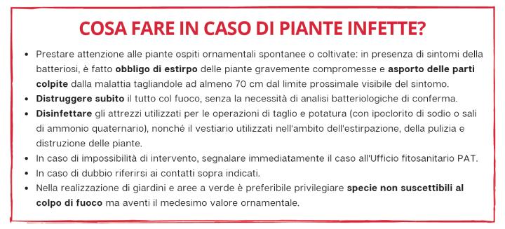 Consigli alla cittadinanza presenti in un volantino distribuito nella provincia di Trento