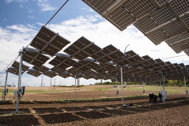 Impianto agrivoltaico realizzato da EDF Agri-PV a Les Renardieres (Francia)