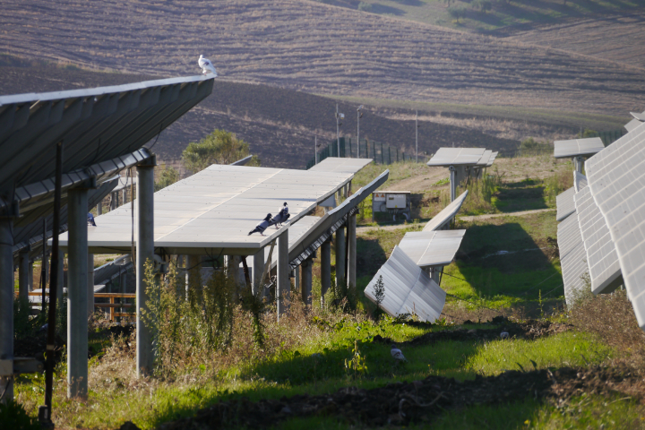 Parco agrivoltaico di Monreale, realizzato per diminuire l'impatto ambientale