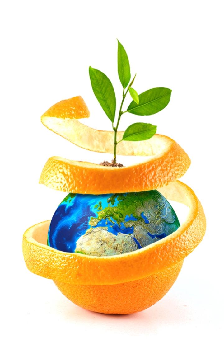 PREV-AM® Plus è un insetticida, fungicida e acaricida di origine naturale a base di olio essenziale di arancio dolce
