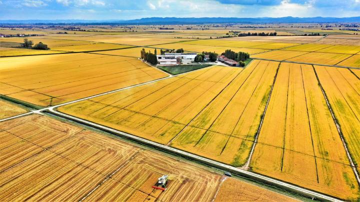 L'azienda agricola Coppo vista dall'alto