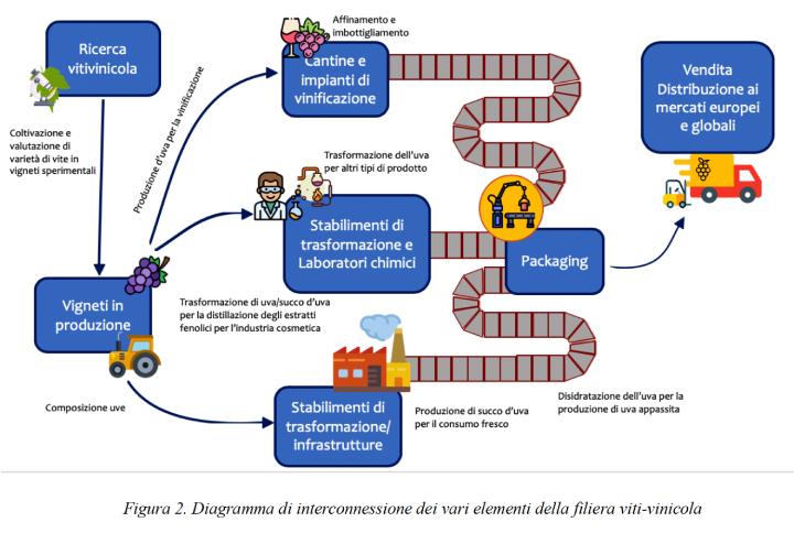 Diagramma di interconnessione dei vari elementi della filiera vitivinicola