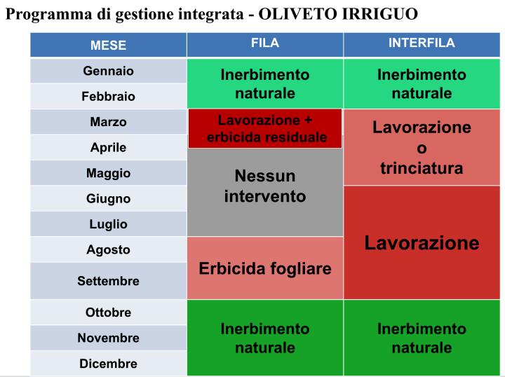 Programma di gestione integrata - Oliveto irriguo