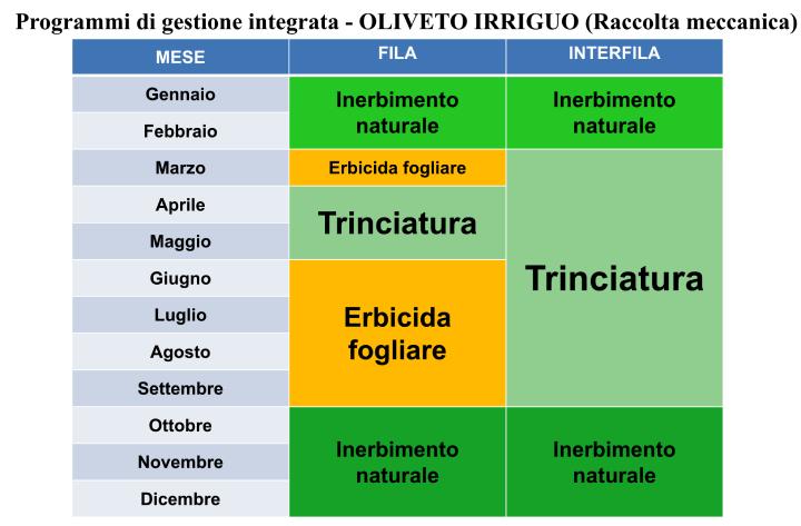 Programmi di gestione integrata - Oliveto irriguo (raccolta meccanica)
