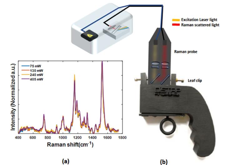 Spettroscopia di Raman