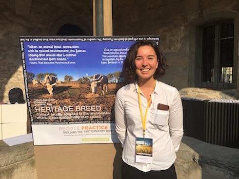 Un'artista californiana ha raccontato la riscoperta della vacca maremmana in Toscana
