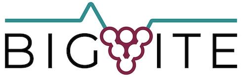 Logo Big Vite