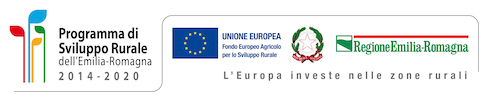 Unione europea e Regione Emilia-Romagna