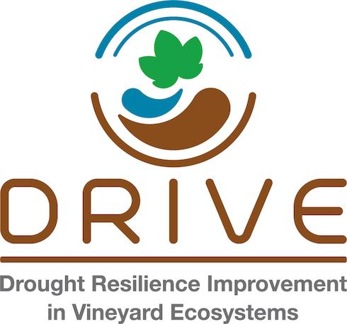 Logo progetto Drive life