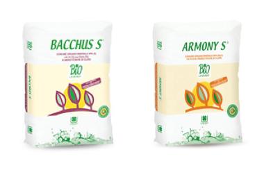 Bacchus e Armony