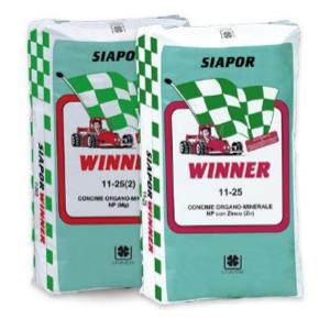 Winner di Siapor