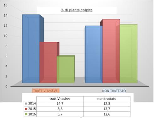 grafico con dati delle piante trattate con vitaseve e non trattate