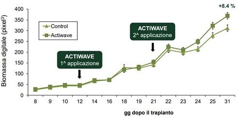 Effetti sulla biomassa derivanti da due applicazioni di Activewave