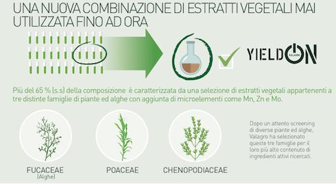 Composizione di YeldOn di Valagro: estratti vegetali di origine naturale aggiunti di microelementi