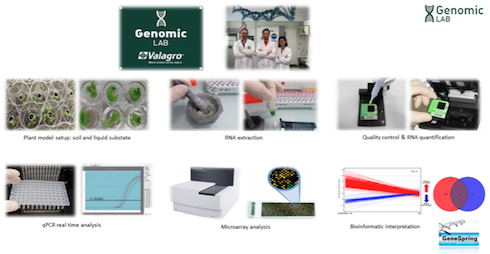 Descrizione laboratori di Valagro: i Genomic Lab