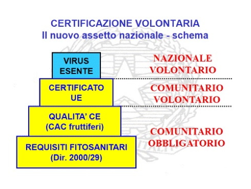 Il nuovo livello di certificazione delle piante da frutto