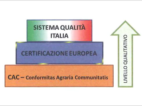 Il nuovo sistema volontario per certificare le piante da frutto si chiamerà Sistema qualità italia