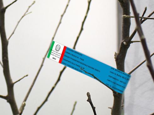 l nuovo cartellino Qvi - Qualità vivaistica Italia che le piante made in Italy potranno avere per identificare materiale sano e di qualità