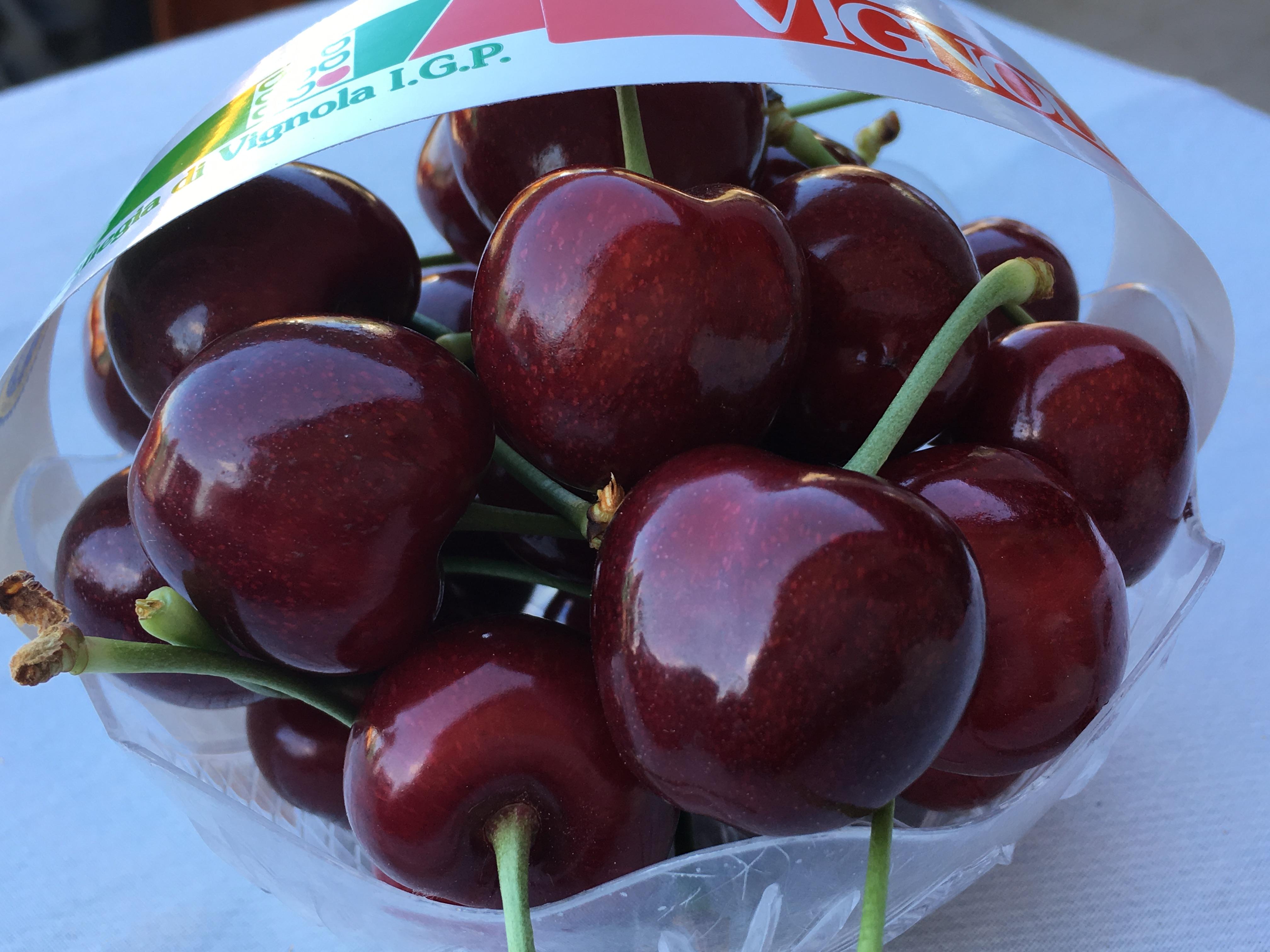 Le ciliegie di Vignola IGP, coltivate con QdC® dall'Acetaia antichi sapori