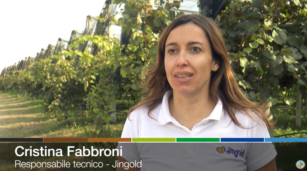 Cristina Fabbroni, responsabile tecnico Jingoldm intervistata da Plantgest