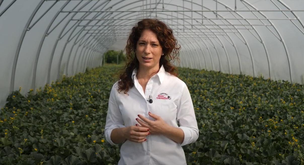Ilaria Orsi di Agricola Don Camillo utilizza QdC per la gestione delle produzioni di melone e altre orticole