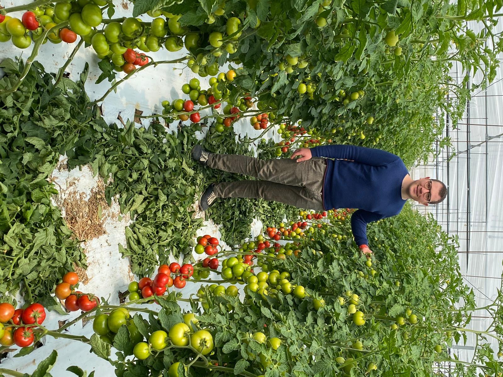 Emanuele Rizzo si affida a QdC per coltivare i pomodori della sua azienda agricola