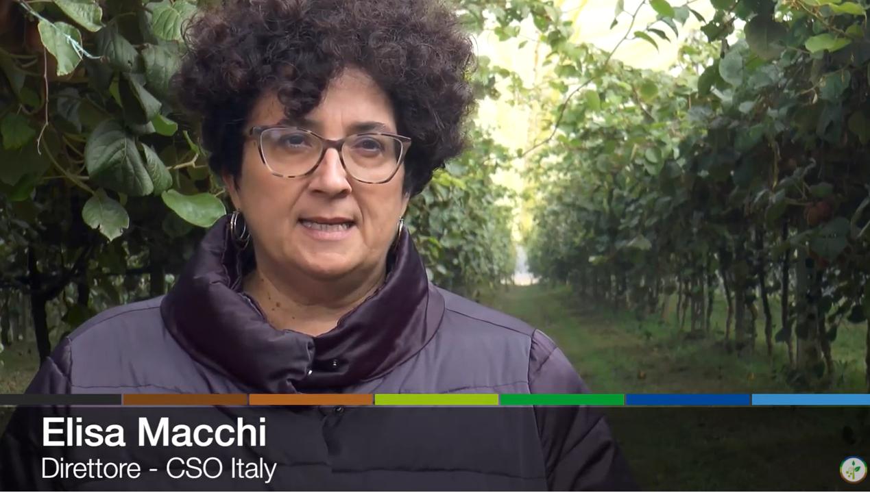 Elisa Macchi, direttore del CSO, intervistata da Plantgest