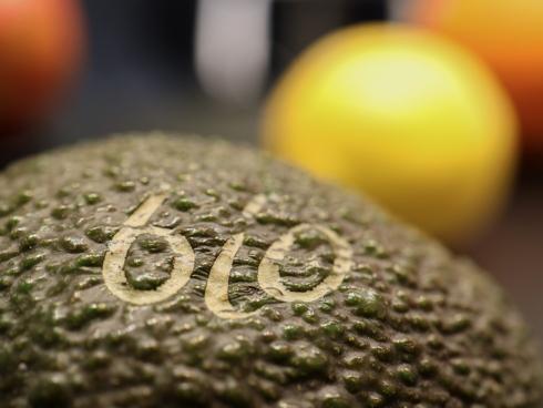 Frutta e verdura biologiche sono sempre più coltivate e consumate