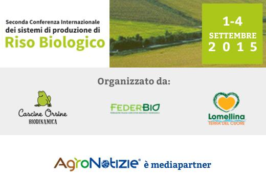 Riso biologico - convegno Lomellina Pavia - AgroNotizie media partner