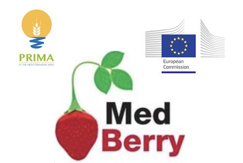 Logo Med-Berry progetto Prima