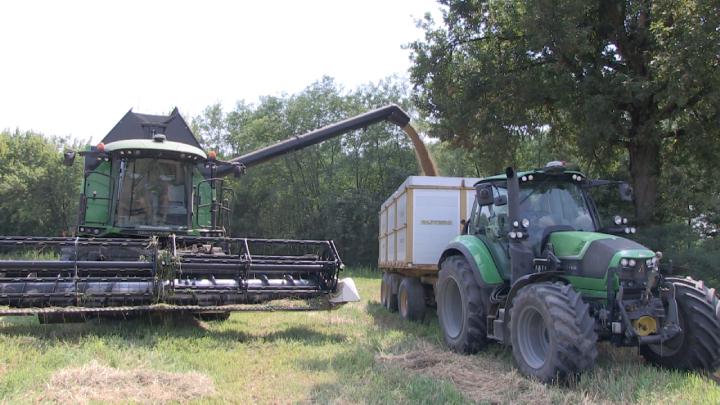 Lo scarico della granella é veloce grazie alla portata di 120 litri al secondo del tubo di lancio
