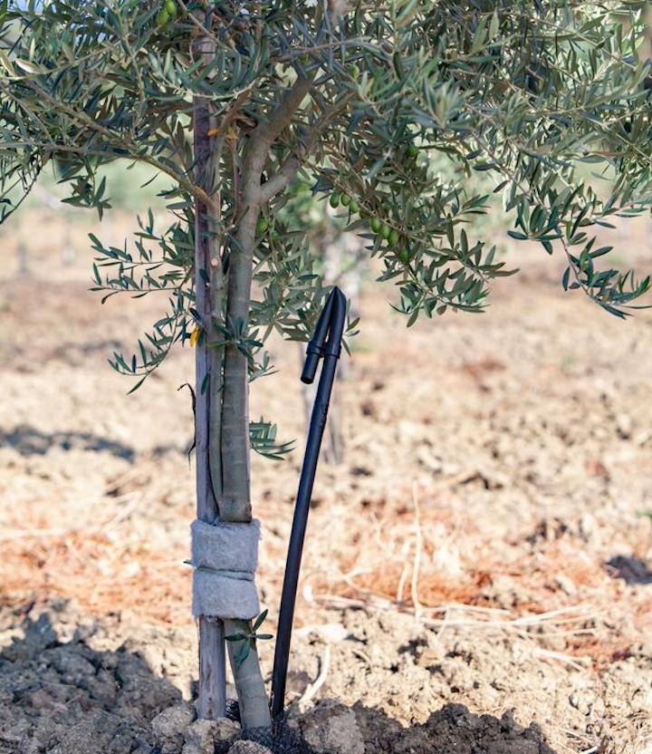 Tanti vantaggi operativi con la subirrigazione