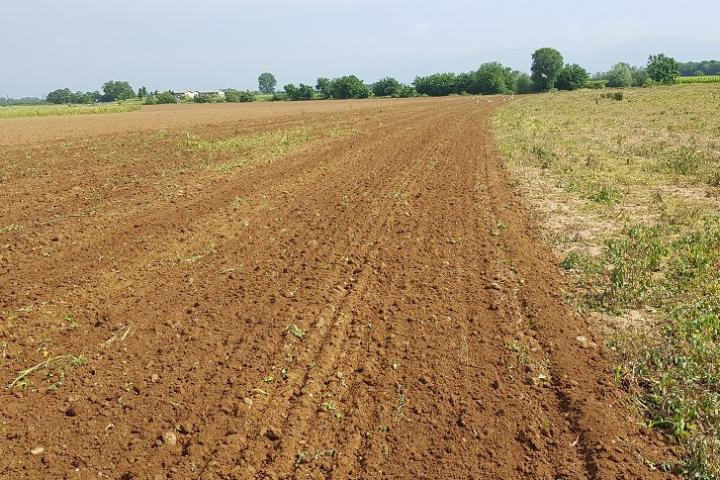 Il letto di semina dopo il passaggio delle attrezzature Kverneland per la minima lavorazione