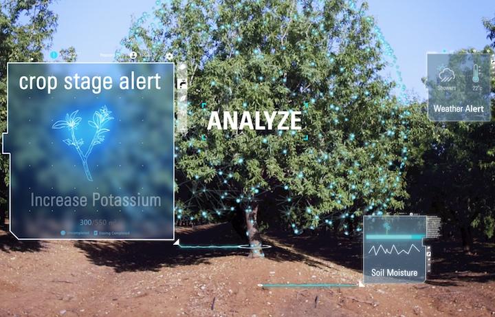 Analisi dei dati raccolti in campo con Netafim NetBeat™