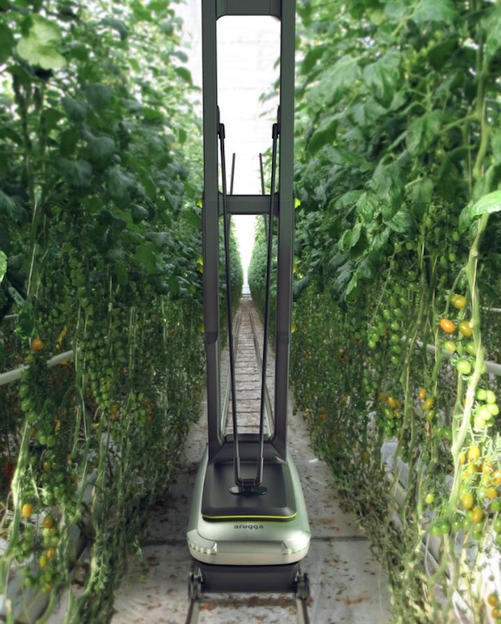 Robot Trata diArugga Ai Farming