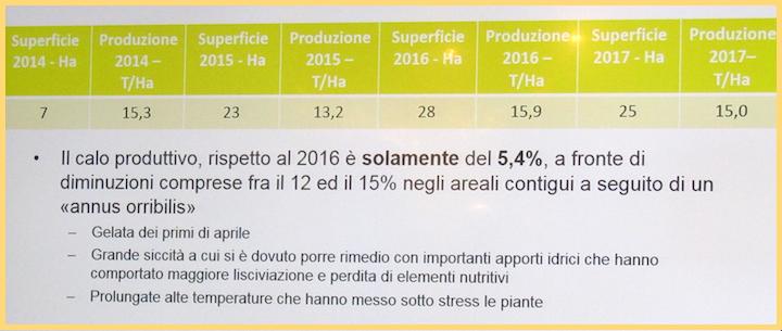 Superfici e produzioni Combi Mais 2014-2017