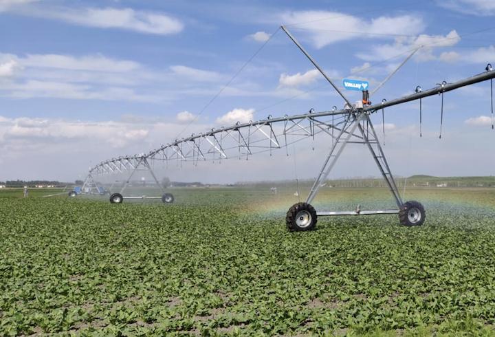 Irrigazione a rateo variabile con i rainger di Valley