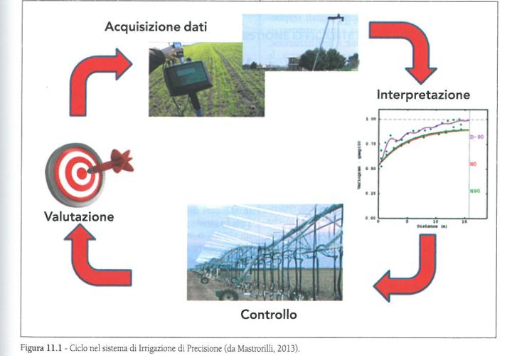 Il ciclo di irrigazione di precisione
