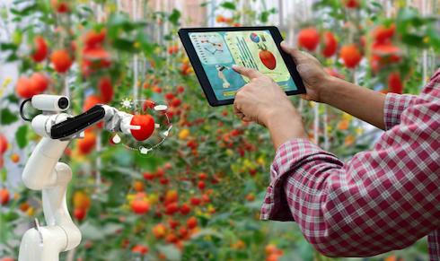 Oggi sono numerose le tecnologie digitali a disposizione degli agricoltori
