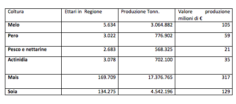 Colture maggiormente colpite dalla cimice asiatica in Veneto